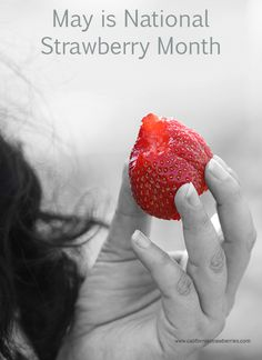 May is National Strawberry Month @CA Strawberries is giving away a digital camera! #StrawberryRed http://bit.ly/1lHIX0E #spon