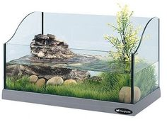 How to Build a Turtle Tank