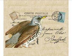 Vintage blue brown bird Paris Carte Postale Digital download graphic image Iron on fabric transfer paper burlap pillows totes No. 559