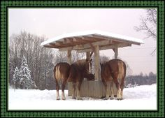 SLOW HORSE FEEDER   bale hay feeder round bale feeder hay saver feeder model # h http www ...
