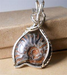 Fossil like snail pendant on etsy.com $36.50