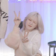 """""""A Son Seungwan dangerous thread 🔞 Dont open if youre under 18 🔞"""" Wendy Red Velvet, Red Velvet Irene, Kpop Girl Groups, Kpop Girls, Seulgi, Chica Cool, Star Girl, Aesthetic Photo, Ulzzang Girl"""