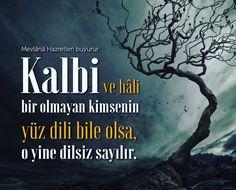 Dilsiz!   #kalp #mevlanacelaleddinrumi  #hzmevlana #sözler #hayırlıcumalar #dil #söz #ilmisuffa