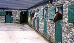 Dingle Horse Riding Stables  Ireland