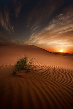 Oman Desert Landscape  by Ahmed Altoqi, via 500px