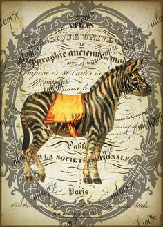 Great for raffle or games prize!  He has multiple circus related prints. Instant Art Original Print French Circus Zebra Ready by Vintagize, $3.25 Print these as 8x10 and mod podge to a canvas, paint sides in coordinating color with attached ribbon for hanging.