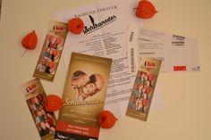 Musical Schikaneder in Wien, Raimund Theater
