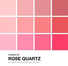 10 cores que serão tendência para casamentos em 2016 - Madrinhas de casamento Rustic Wedding, Our Wedding, Dream Wedding, Colour Pallette, Palette, Pink Color Chart, Pantone, Home Wall Painting, Color Inspiration