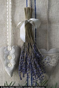 Lavender and hand-sewn hearts – the perfect decoration for … – Growing Lavender Gardening - Growing Plants at Home Lavender Cottage, Lavender Garden, Lavender Scent, Lavender Blue, Lavender Fields, Lavender Flowers, French Lavender, Lavenders Blue Dilly Dilly, Color Lavanda