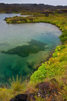 Pond near Myvatn, Iceland