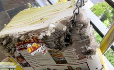 Phone books. Parrots just love to chew paper, and anything they can sink their beaks into.