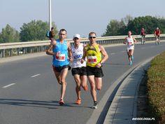 Galeria darmowych zdjęć z Wrocław Maratonu Jogging, Running, Sports, Walking, Hs Sports, Keep Running, Why I Run, Sport