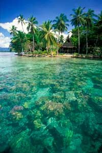 Solomon Islands--ahh, those tropical islands!