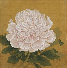 From the Harvard Art Museums' collections Blossoming Peony Chinese Drawings, Art Drawings, Peony Illustration, Asian Flowers, Harvard Art Museum, Peony Painting, Korean Art, China Art, Cultural