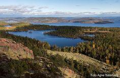 Höga kusten. Foto: Agne Säterberg About Sweden, Korat, Lappland, Finland, Places To See, Scandinavian, River, Countries, Nature