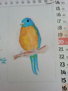 Bird...auquarelle..#drawingisra My Drawings, Plastic Cutting Board, Bird, Birds, Birdwatching
