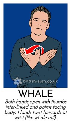 British Sign Language online course, free resources, games, information, and greeting cards. Sign Language Games, Sign Language Phrases, Sign Language Alphabet, Sign Language Interpreter, Learn Sign Language, Baby Sign Language, English Sign Language, British Sign Language, Learn Bsl