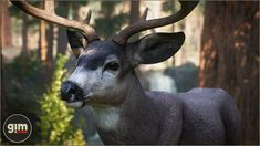 Elevate your workflow with the Animalia - Mule Deer (pack) asset from gim. Find this & other Animals options on the Unity Asset Store. Mule Deer, Unreal Engine, Game Art, Unity, Goats, Animation, Animals, Magazine, Templates