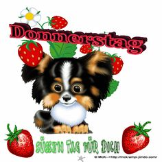 McK GB Donnerstag BBCode für Jappy und Co auf der Homepage - halfpint Science Lesson Plans, Free Lesson Plans, Thursday Greetings, Puppy Images, Free Phone Wallpaper, Dental Plans, Free Coupons, Teddy Bear, Animals