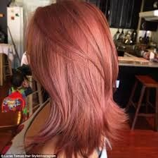 Image result for dark rose gold hair