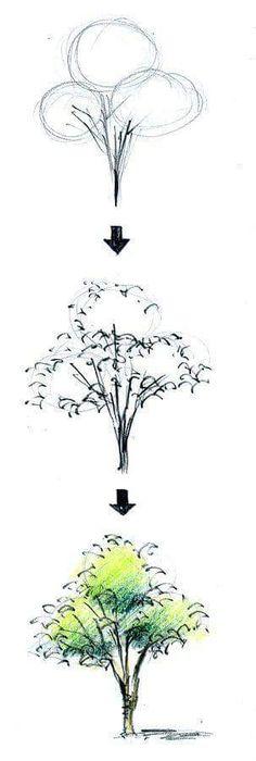 CONTENEDOR DE LOS FASICULOS Landscape Sketch, Landscape Drawings, Architecture Drawings, Landscape Design, Architecture Graphics, Plant Sketches, Tree Sketches, Drawing Sketches, Art Drawings