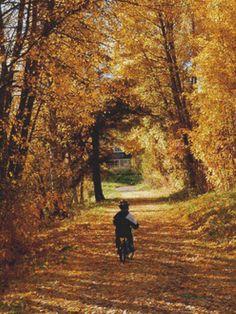 Boy in Autumn PDF Cross Stitch Pattern by XSquaredCrossStitch