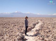 O Salar de Atacama é um deserto de sal no Chile. Algumas áreas da salina fazem parte da reserva ecológica Los Flamencos.  Salar de Atacama is the largest salt flat in Chile. Some areas of the salt flat form part of Los Flamencos National Reserve.