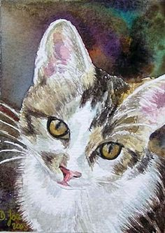 Original painting of a cat, kitten in watercolor, white, grey, and a Blue Hydrangea original watercolor painting in realistic style by Doris Joa