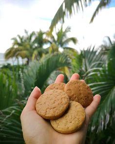 """""""Mindenmentes"""" kekszreceptek nem csak édesszájúaknak (gluténmentes, tejmentes, tojásmentes, hozzáadott cukormentes, szójamentes, vegán) – Éhezésmentes karcsúság Szafival Health Eating, Winter Food, Biscuits, Paleo, Gluten Free, Vegetarian, Cookies, Healthy, Cooking"""