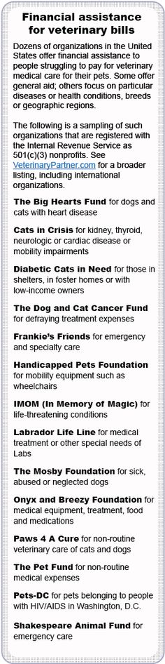 Help exists for those struggling to pay veterinary bills - VIN: Good read about organizations that offer financial assistance for veterinary care - includes a list of such organizations.