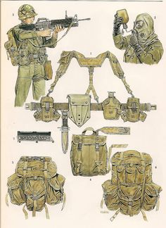 ALL-PURPOSE LIGHTWEIGHT INDIVIDUAL CARRYNG EQUIPEMENT (ALICE)