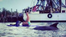Stand up paddle board dolphin tour - shem creek charleston sc