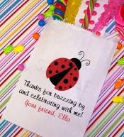 Custom Goody Bags, Goodie Candy Favor Bag, Ladybug Party