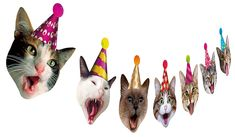 Birthday Cat Garland, Photographic Cat Faces Birthday Banner, Kitties Bday Party Bunting Decoration - Decorations for your next Party! Birthday Garland, Party Bunting, Party Banners, Birthday Party Decorations, Birthday Parties, Party Favors, Birthday Deals, Birthday Freebies, My Son Birthday