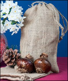 Paperwhite Ziva Bulbs (6 extra large) in a Natural Burlap Bag  $8.95 http://www.easytogrowbulbs.com/p-674-paperwhite-ziva-bulbs-6-extra-large-in-a-natural-burlap-bag.aspx