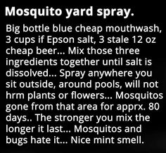 household hacks Mosqito yard spray domyownpestcontrol is part of Mosquito spray - Repelir Mosquitos, Handy Gadgets, Mosquito Yard Spray, Homemade Mosquito Spray, Mosquito Plants, Just In Case, Just For You, Insecticide, Bug Control