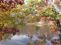 Lake Envy