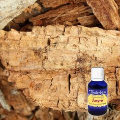 Amyris Essential Oil (Amyris balsamifera) for aromatherapy, skin care and natural perfumes. Tinderbox: supplying pure essential oils since Haiti Country, Blue Glass Bottles, West Indian, Clary Sage, Citronella, Beard Oil, Pure Essential Oils, Raw Materials, Salvia