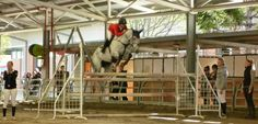 A competitor in the show jumping warms up for her event in the main arena at the Sydney Royal Easter Show