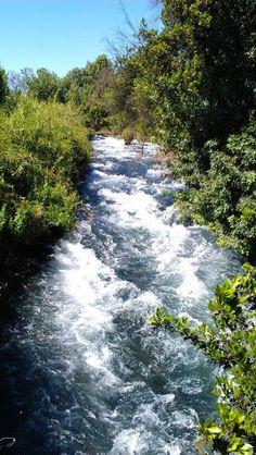Los Altos del Golán ,,, Cabeceras del rio Jordan. están rodeados por el Monte Hermón en el norte y el río Yarmuk en el sur.