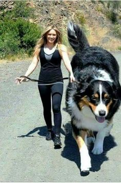 30 Gigantic Dogs In the World You Won't Believe are Actually Real - Tiere - Hunde Huge Dog Breeds, Huge Dogs, Giant Dogs, Cute Funny Animals, Cute Baby Animals, Funny Dogs, Cute Baby Dogs, Cute Dogs And Puppies, Doggies