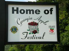 Ellijay,GA has been home of the GA Apple Festival for 43 years now. www.blueskycabinrentals.com