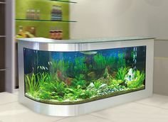 Awesome aquariums fish tank bar for the basement :)