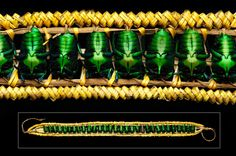Bottom- headband of iridescent green beetles and orchid fibre. Top- detail. The item is sometimes attached to wig-like headgear. Papua New Guinea; Highlands. Mid 20th c.