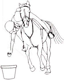Pony Club Games (lots of relay race ideas) My Horse, Horse Love, Therapeutic Horseback Riding, Pony Games, Horse Therapy, Horse Games, Riding Lessons, Horse Trailers, Horse Training