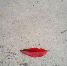 Nature flirts.