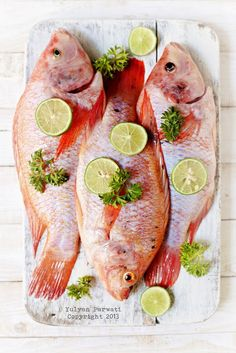 Ikan Nila Merah (red tilapia) - Reality Worlds Tactical Gear Dark Art Relationship Goals Tilapia Dishes, Tilapia Recipes, Fish Dishes, Seafood Dishes, Fish Recipes, Seafood Recipes, Fish And Meat, Fish And Seafood, Hummer