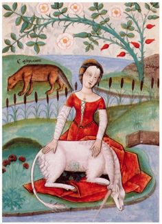 'The Young Woman and the Unicorn' (1490) wonderful colors for such an old painting.  The unicorn became a symbol of purity, and was associated with a virgin maiden.