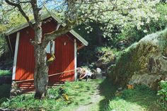 mira ouerfelli Landscape, House Styles, Plants, Home Decor, Decoration Home, Room Decor, Plant, Interior Design, Home Interiors
