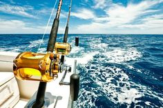 deep sea sporting fish | Deep Sea Fishing #fishingvacation